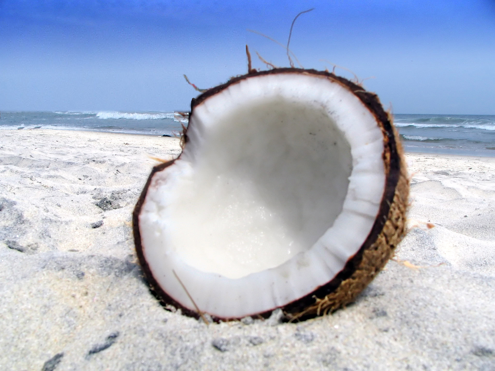 coconut oil and belly fat