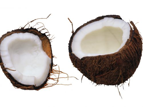 What are the Metabolic Health Differences of Eating the Fats in Coconut and MCT Oil?